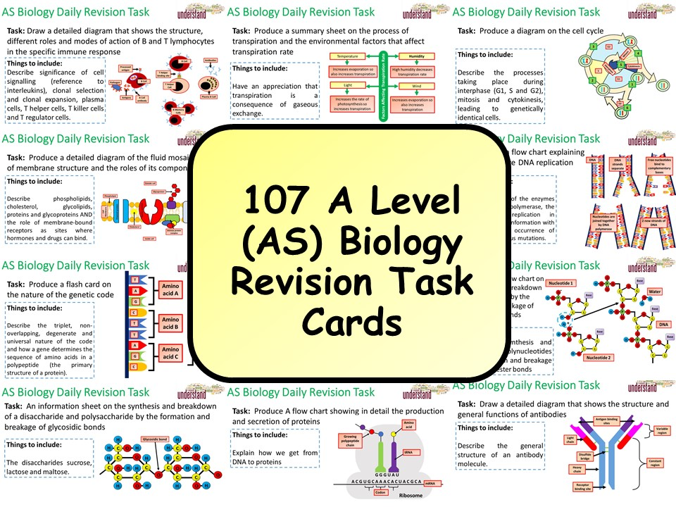 107 A Level (AS) Biology Revision Task Cards