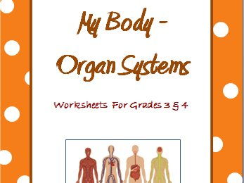 Human Body Organ Systems - Worksheets for Grade 3 and 4