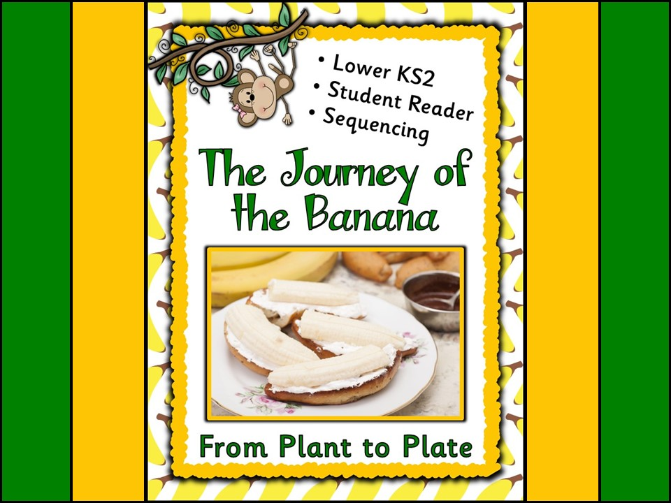 From Plant to Plate: The Journey of the Banana Part 2