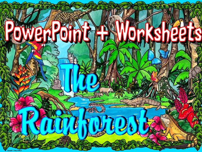 The Rainforest – Worksheets and PowerPoint