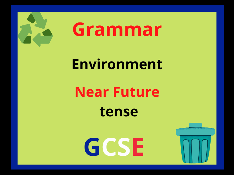 French near future tense - environment
