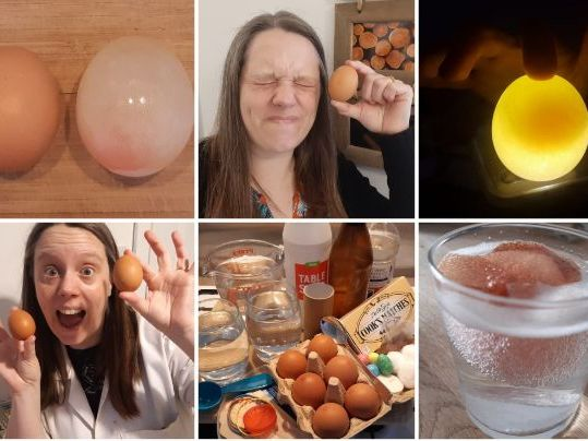 10 Egg Themed Experiments For Under A Fiver