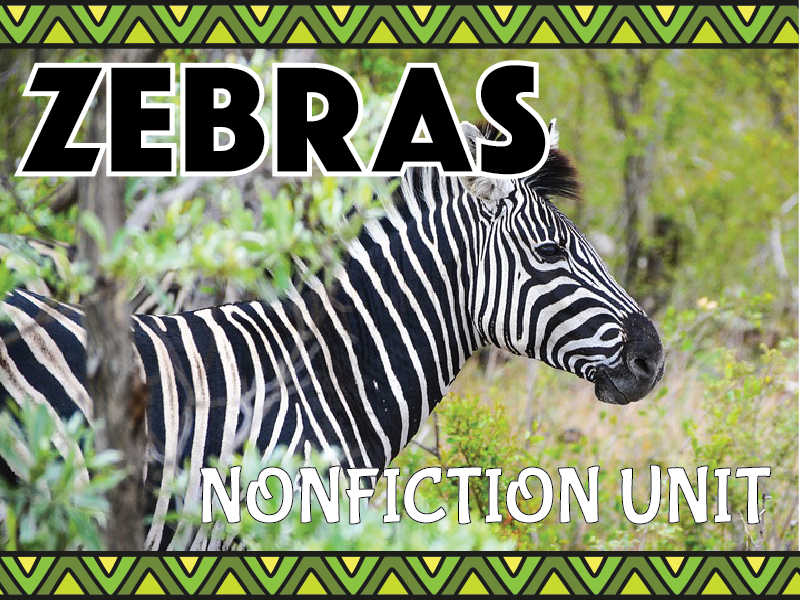Zebra Nonfiction Unit