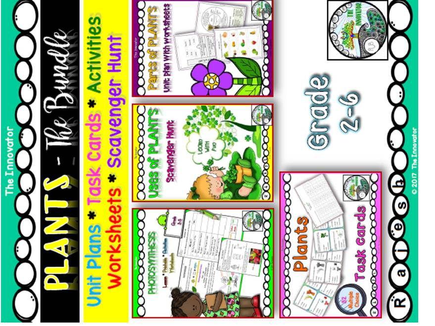 PLANTS - The Bundle