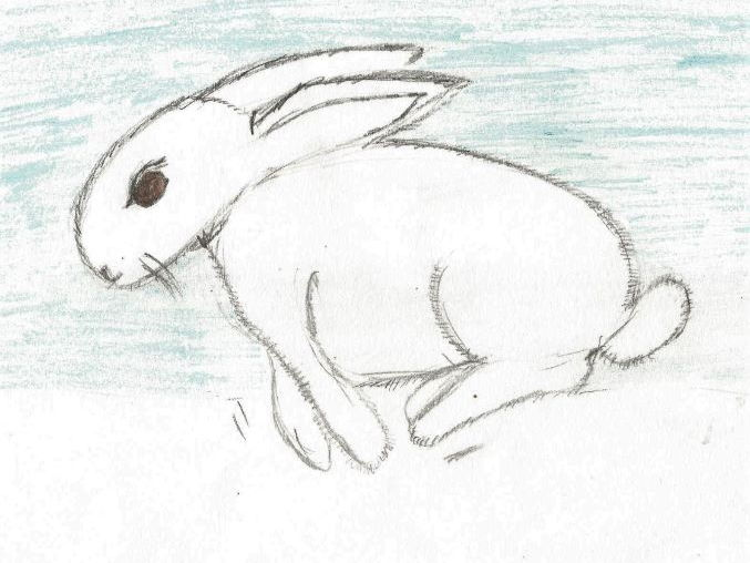 Snow Rabbit - a story using similes and metaphors