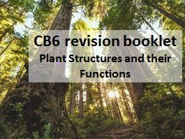 CB6 Revision booklet