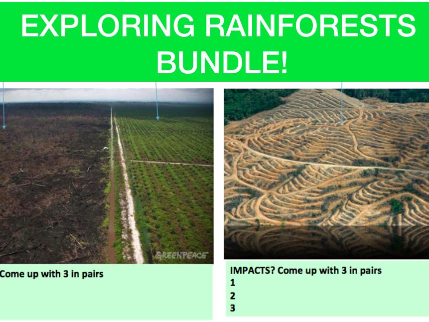 Exploring Tropical Rainforests! Bundle