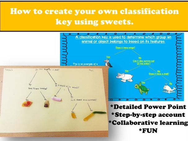Creating your own Classification Key