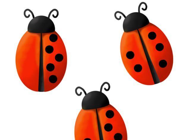 Ladybird Numberbonds to 5