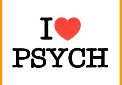PSYCHOLOGY - MASS MEDIA (19 LESSONS)