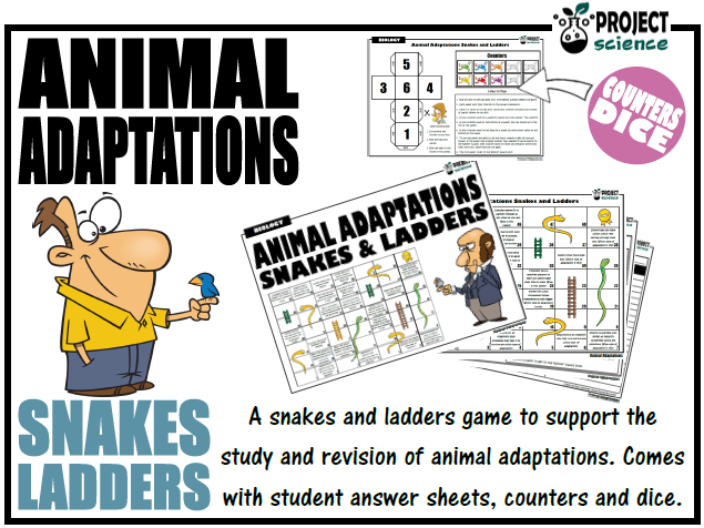 Animal Adaptations Snakes and Ladders