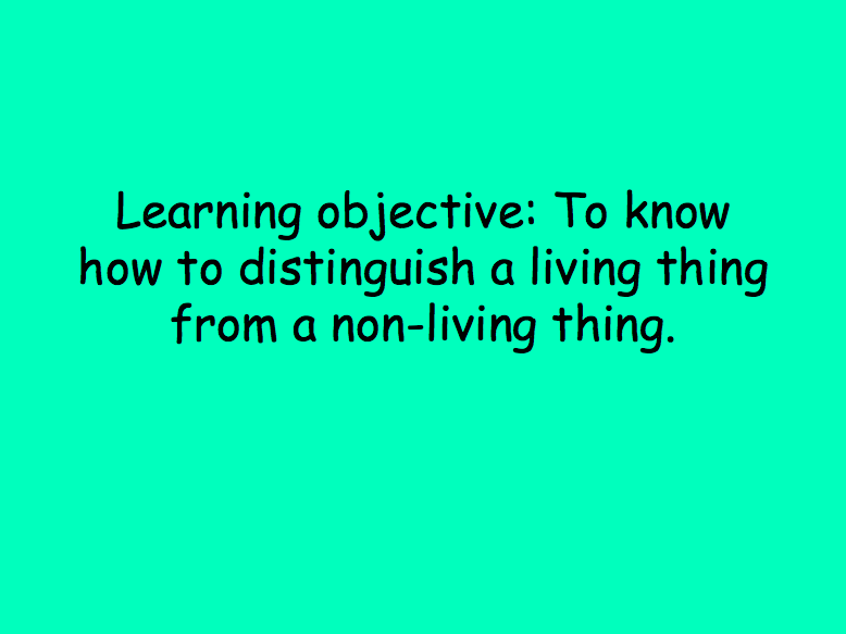KS1 Science - Living and non-living things lesson plan