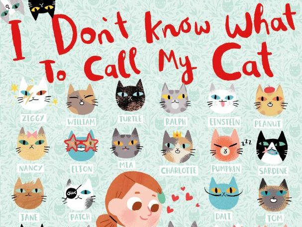 I Don't Know What to Call My Cat - Simon Philip & Ella Bailey - Activity Pack