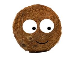 The Shy Coconut - Prediction Activities
