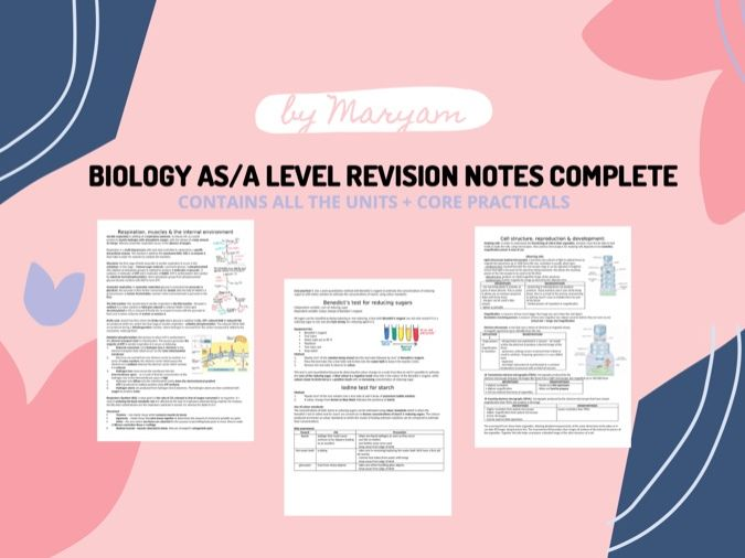 Biology - International Edexcel AS/A Level Revision Notes