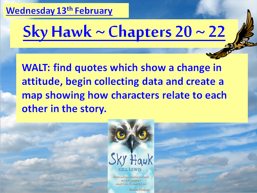 Sky Hawk by Gill Lewis ~ THE COMPLETE SET OF 20 LESSONS ~ FOUR WEEKS COMPLETE SCHEME OF WORK