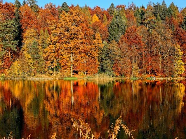 Write about your most memorable fall memories