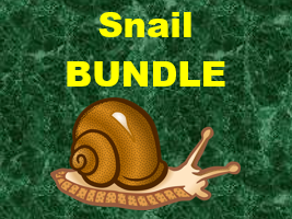 Escargot (Snail in French) Verbs Bundle
