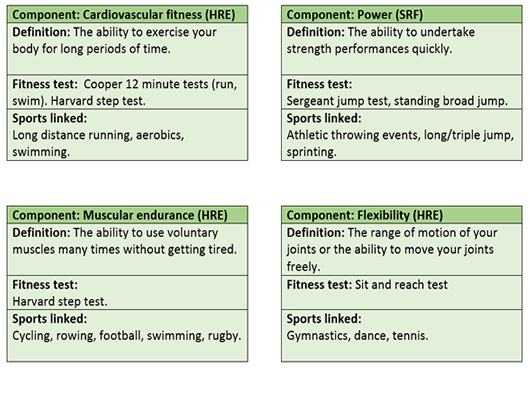 GCSE PE Edexcel components of fitness revision flash cards