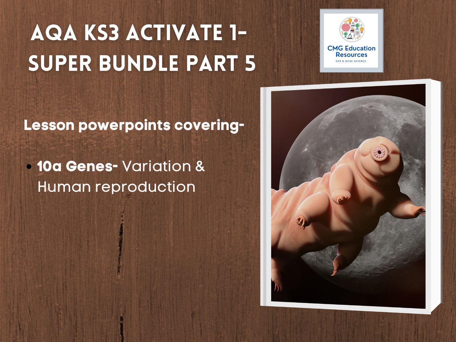 KS3 AQA Activate 1- Super bundle part 5