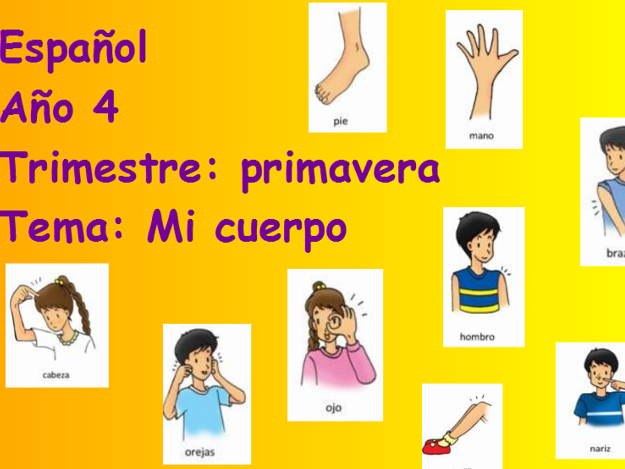 Primary Spanish Flipchart, resources and 5 x 45 mins Plan