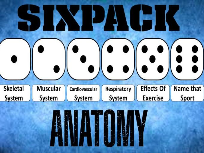 GCSE PE Edexcel - Six Pack - Anatomy