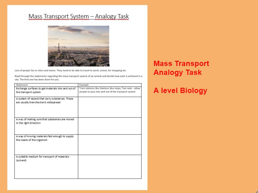 A level  Biology Mass Transport System Analogy