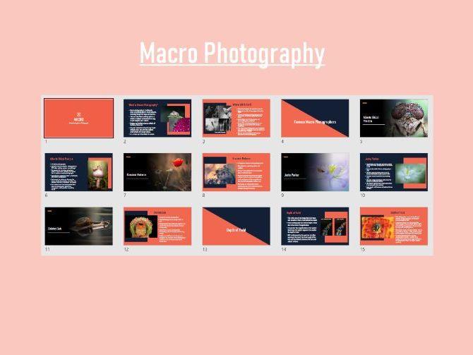 Macro Photography Powerpoint Presentation