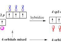 IB Chemistry Covalent Bonding HL