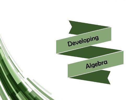 Developing Algbera 1