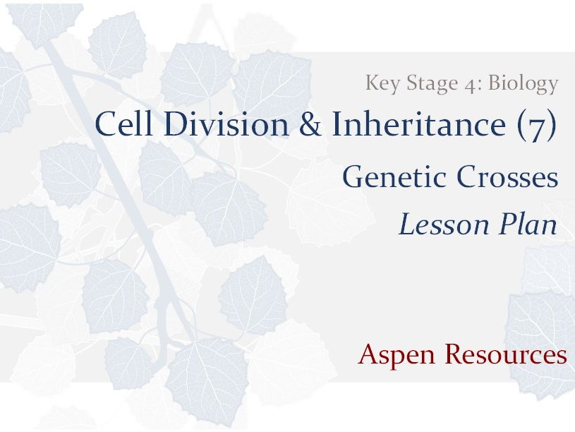 Genetic Crosses  ¦  Key Stage 4  ¦  Biology  ¦  Cell Division & Inheritance (7)  ¦  Lesson Plan