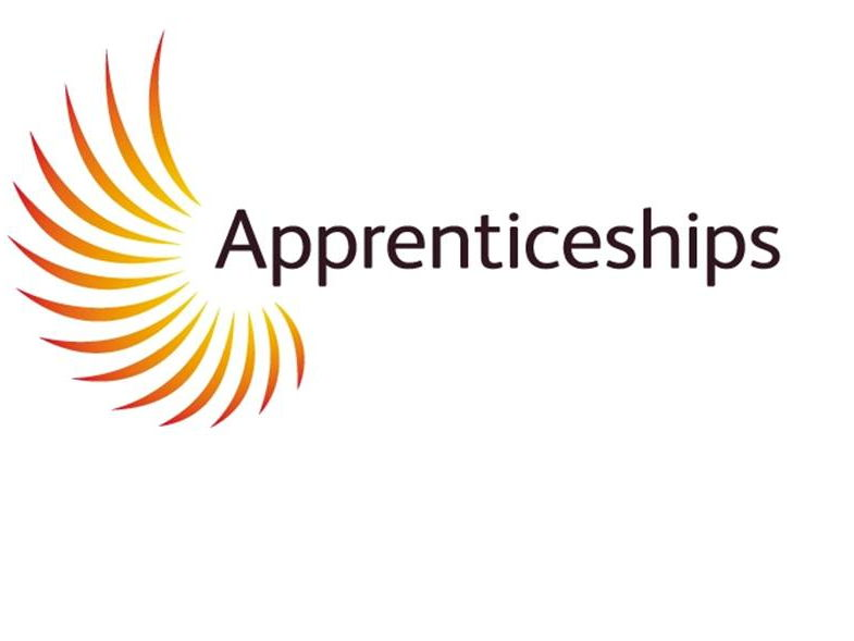 Apprenticeships - What's available and how do they work