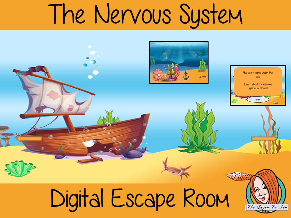 The Nervous System Science Escape Room