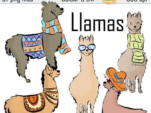 Llama Alpaca Clip Art Set 37 high resolution PNG files