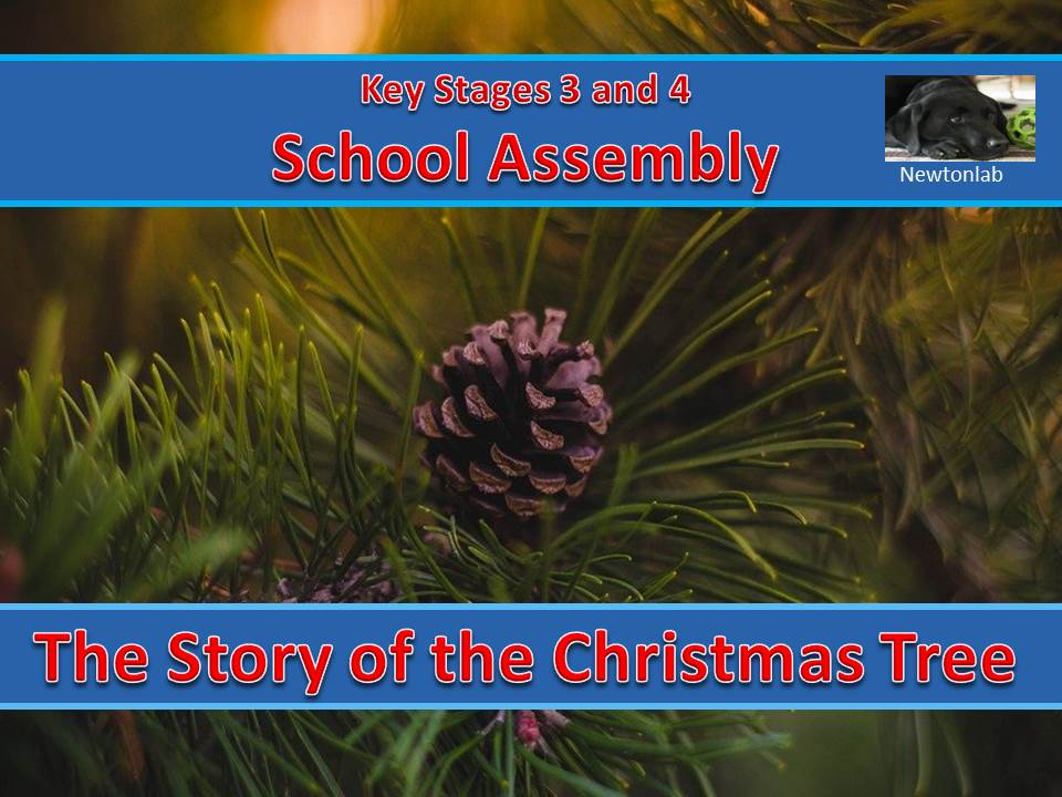 The Story of the Christmas Tree Assembly - Key Stages 3 and 4