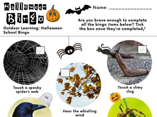 Halloween Outdoor Bingo