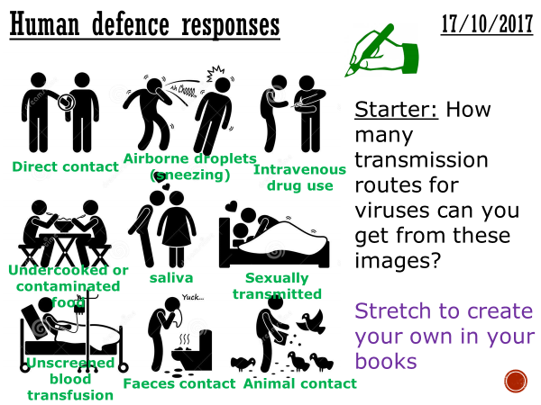 Human defence responses - complete lesson (GCSE 1-9)