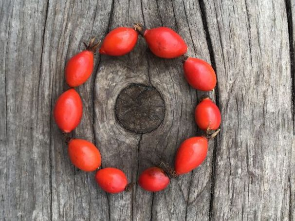 Natural nature shapes with looseparts to download