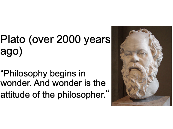 What is Philosophy? (P4C/PhiE)