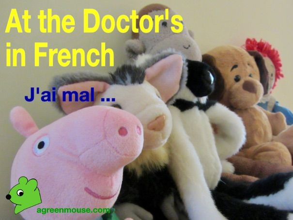At the Doctor's in French - Video + Worksheet