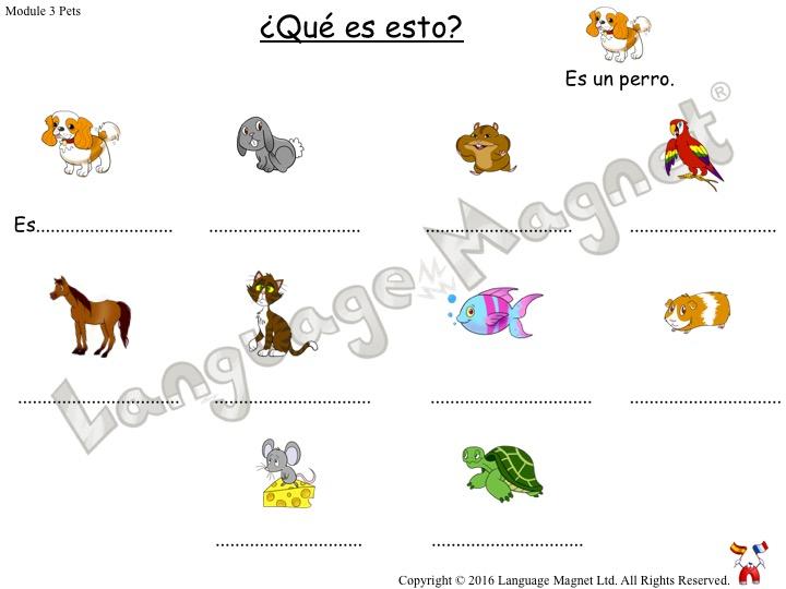 Spanish Pets Activity Sheets