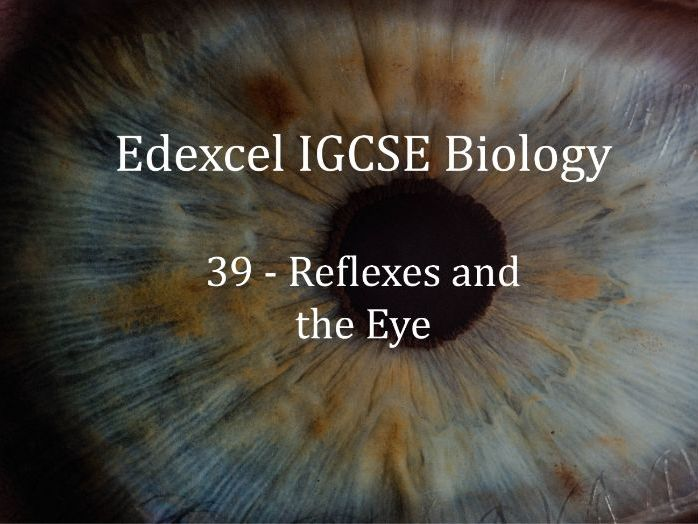 Edexcel IGCSE Biology Lecture 39 - Reflexes and the Eye