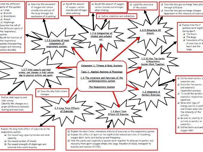 Edexcel 9-1 GCSE PE - The Respiratory System Topic Mind Map