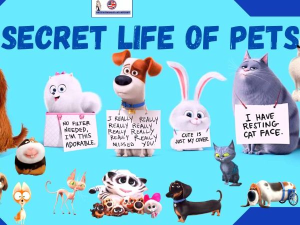 "Interactive book ""Secret life of pets"""