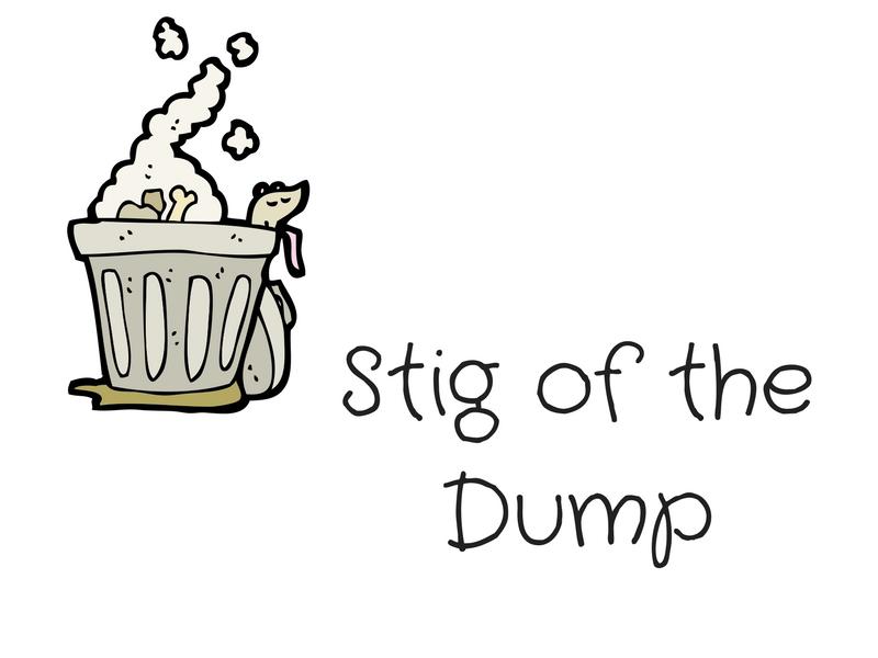 Stig of the Dump Reading Comprehension