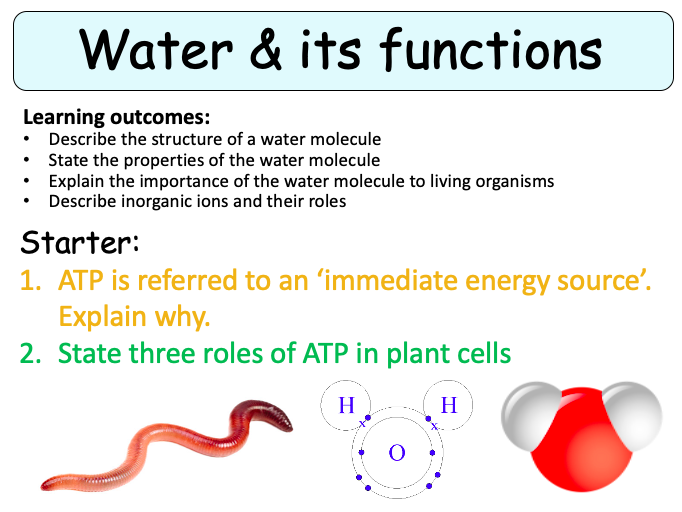 NEW (2016) AQA AS Biology – Water