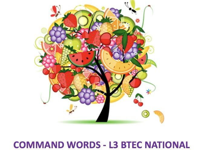COMMAND WORDS - guide for level 3 students