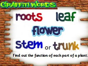 Plants Pack KS1