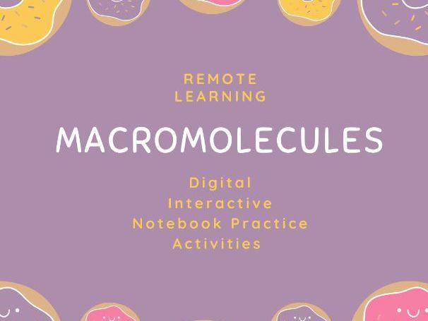 Remote Learning Biochemistry Unit: Digital Macromolecules Practice Activities