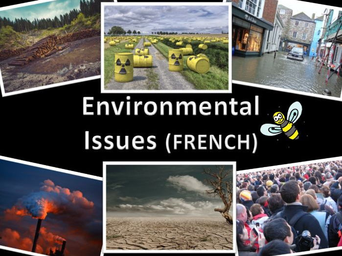 French environmental issues - flashcards and labelled display images